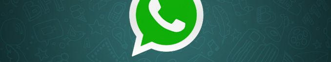 How to track on WhatsApp